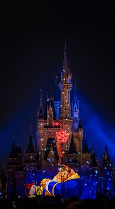 """Magic Kingdom 