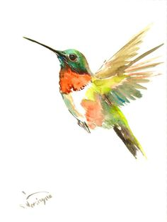 Hummingbird, original watercolor painting, flying hummingbird, 12 X 9 in by ORIGINALONLY on Etsy https://www.etsy.com/listing/213791310/hummingbird-original-watercolor-painting