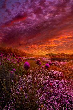 A beautiful sunset Beautiful Sunset, Beautiful World, Beautiful Images, Beautiful Gorgeous, Beautiful Scenery, Beautiful Things, All Nature, Amazing Nature, Landscape Photography