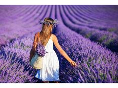 Türkiye'nin lavanta cenneti: Kuyucak Köyü | NTV Lavender Garden, Lavender Scent, Lavender Fields, Lavendar Painting, Mayfield Lavender, Valensole, Hair Wreaths, Photo Images, Flower Basket