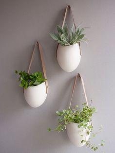 40 Hanging Plant Ideas 14