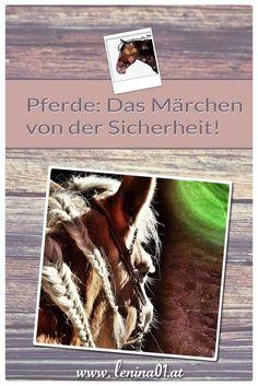 Pferde: Das Märchen von der Sicherheit!