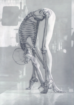the human skeleton laminated anatomy chart pinterest. Black Bedroom Furniture Sets. Home Design Ideas