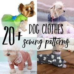Cutest paid & free printable dog clothes patterns - Swoodson Says Winter is coming and my little dog is cold! I grew up with a big,furry dog and rolled my eyes at dog sweaters. until I adopted a small dog that shivers when it drops below Small Dog Clothes Patterns, Clothing Patterns, Sewing Patterns, Dress Patterns, Sewing Ideas, Dog Sweater Pattern, Dog Pattern, Dog Coat Pattern Sewing, Pants Pattern