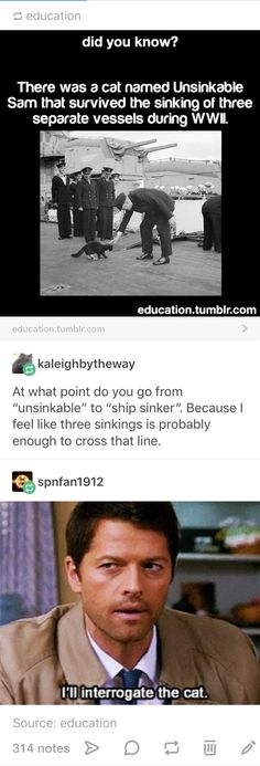 Funnier that his name is Sam and we have a thing for vessels in this Fandom.