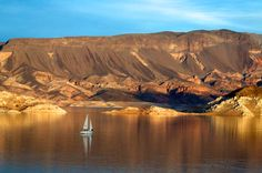 """See 636 photos and 21 tips from 6282 visitors to Lake Mead. """"Beautiful scenery you should see if you are in Vegas. Interesting to visit the Hoover dam. Lake Mead Nevada, Las Vegas, Boulder City, Hiking Quotes, Hoover Dam, Bouldering, Lakes, Places Ive Been, Grand Canyon"""