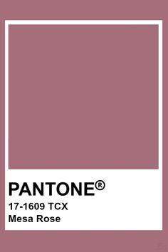 Pantone Mesa Rose