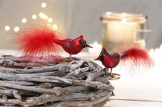 Vintage style clip on Bird Ornaments for Christmas or anytime. Loved the presentation of these colourful birds with the natural wood basket. Vintage Style, Vintage Fashion, Colourful Birds, Wood Basket, Bird Ornaments, Christmas Traditions, Natural Wood, Candle Holders, Presentation