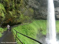 Silver Falls State Park near Salem, OR  - Trail of 10 Falls. Oregon is a state I would love to spend more time in.