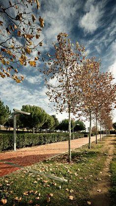 Batlle i Roig | Landscape Barcelona. Catalunya Park. Photography: www.jordisurroca.com