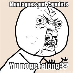 Made for my 9th grade English class   MemeCreator.org - Montagues and Capulets Y u no get along??