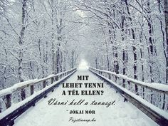 Jókai Mór idézete a télről. A kép forrása: Pozitív Nap # Facebook