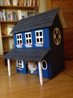 I made this cat house out of 2 cardboard boxes.