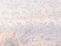Frost crystals on the window