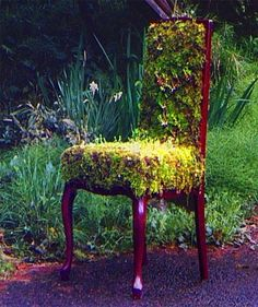 chair with moss Would live to try this out
