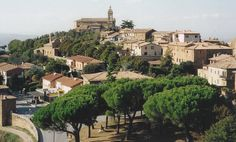 Wander through the hill towns of Tuscany and sample their wines, such as Brunello di Montalcino.