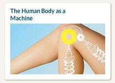 Un MOOC sulla biologia del corpo umano