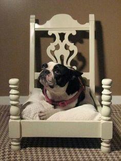 Une chaise recyclée en.lit de chiens