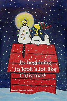 Snoopy and Woodstock:: A Charlie Brown Christmas. Snoopy Love, Snoopy E Woodstock, Charlie Brown Snoopy, Peanuts Christmas, Noel Christmas, Winter Christmas, Vintage Christmas, Charlie Brown Christmas Decorations, Christmas Quotes