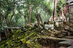 #travel #cambodia #snapshot #여행 #캄보디아 #캄보디아여행 #앙코르유적 #여행사진 #스냅사진 #포토그래퍼 #photographer