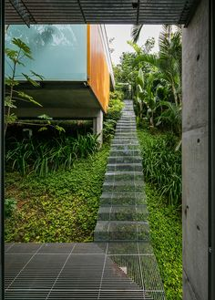Landscape Design Idea - install low impact stairs for when you don't want to disturb the environment and ecosystems of the area, and allow plants to grow beneath them.