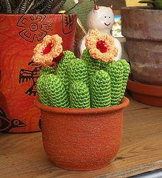 Echinopsis cactus free crochet pattern by Kerstin Batz
