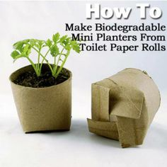 It's easy! Simply cut four slits and fold over one another as you would a box top. Here's another way to make up-cycled planters for free: www.realfarmacy.com/how-to-make-transplant-pots-for-free/