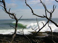 Maine coast East Coast Beaches, Paris, Lighthouse, Cure, Maine, Beautiful Places, Coastal, Favorite Things, Heaven