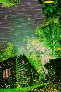 Every June, the Elkmont Ghost Town of Great Smoky Mountains National Park lights up with the world's largest gathering of synchronous fireflies.