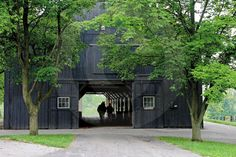 Google Image Result for http://www.bloodhorse.com/images/content/AE_FamousBarn04.jpg