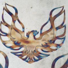 Phoenix//Trans Am Firebird WS6 2ftx2ft 14 gauge mild steel wall art !!! outline