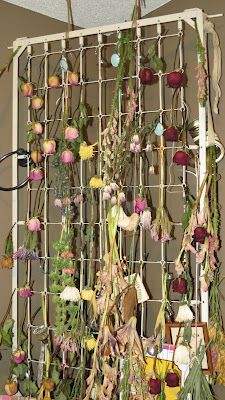 Repurposed spring from baby bed - perfect for craft board and drying flowers too!