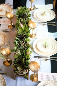 7 Planted Centerpieces for Your Table — Set the Table