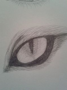 Fox Eye by TsubakiMorinozuka.deviantart.com on @deviantART