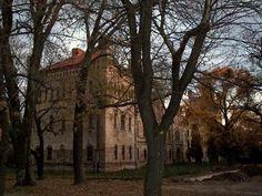 #antique #neo #gothic #mansion #XX #XIX #century #History
