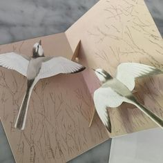 Pop-up Bird Card (White Wagtail) - Mimoto Japanese Homewares & Design Japanese Stationery, Bird Cards, Japanese Design, Pop Up, Paper, Birds, Google, Japan Design, Popup