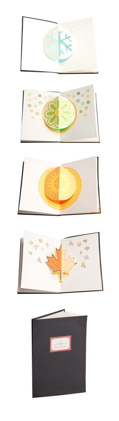 Books without words (pop-up): The Book of Seasons