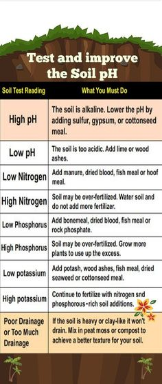 How to Test and improve the Soil pH in your Garden #hydroponicsorganic #hydroponicstips