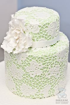 Pretty Hand Piped #Lace #Wedding #Cake Gainesville Modern C.  mint green