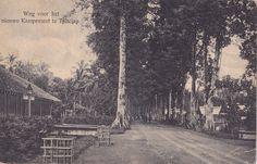 Tempo Doeloe #83 - Cilacap, Jalan Baru, 1916
