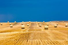 Bales on the Storm | Flickr - Photo Sharing!