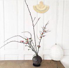 Ikebana, Bonsai, Glass Vase, Home Decor, Decoration Home, Room Decor, Bonsai Trees, Flower Arrangements, Interior Decorating