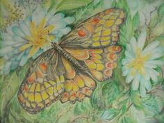 I'm Going to Win A Poetry Contest ! You can too. Click the butterfly.
