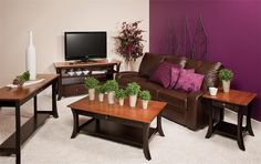 Amish Alsace Living Room TV Stand - clean, contemporary and transitional. Love it