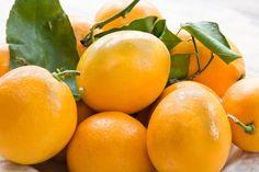 Meyer lemons-my new obsession! A cross between a lemon and a mandarin orange makes a sweet and tart treat!