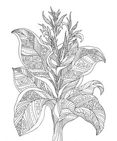 30 Best Advanced Flower Coloring Pages images | Flower ...