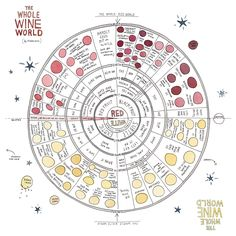 Why should the wonders of scratching-and-sniffing be reserved for those under the legal drinking age? A new wine book has a nice nose and not a hint of snobbery. Guide Vin, Wine Guide, Caves, Wine Facts, Wine Chart, Legal Drinking Age, Wine Education, Wine Cheese, In Vino Veritas