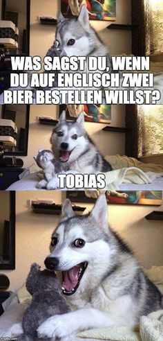14 Best Jokes From Pun Husky - Jokes - Funny memes - - Why Did Mozart Killed His Chicken? The post 14 Best Jokes From Pun Husky appeared first on Gag Dad. Pun Dog Meme, Bad Pun Dog, Dog Jokes, Puns Jokes, Animal Jokes, Funny Animal Memes, Funny Puns, Funny Animal Pictures, Funny Shit