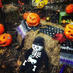 Happy Halloween  #silverbirchhotel #haunted #creepy #pumpkincarving #pumpkin #halloween #halloween2016 #skeleton #evil #devil #happyhalloween #happyhalloween #omagh