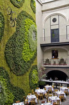Green Wall, Mexico City, Mexico photo via jan